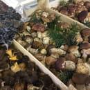 Entrée : La terrasse de Felicetta  - Ceps et truffes fraîche  -