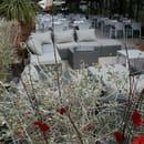 Le Danieli  - La terrasse lounge du Danieli  -   © IBP