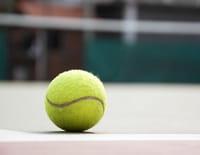Tennis : Tournoi WTA de Doha - Finale