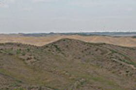 La Chine en lutte contre la désertification