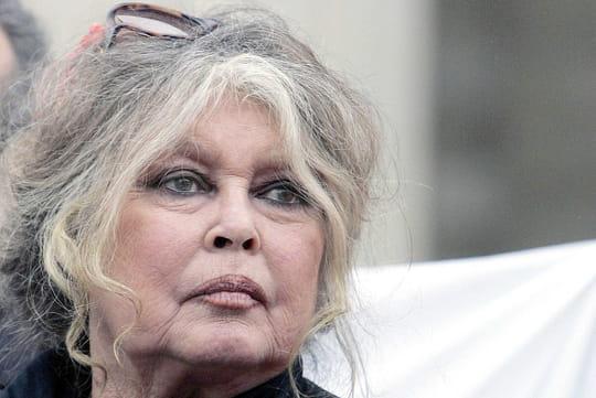 """Brigitte Bardot ne veut pas """"accepter une France algérienne"""""""