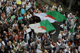 Algérie: Bouteflika inflexible, jusqu'où iront les manifestations?