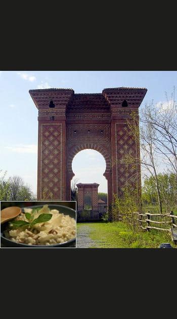 A la découverte de la truffe d'Alba, dans le Piémont