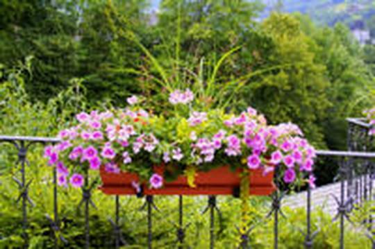 Jardinière: comment bien la choisir