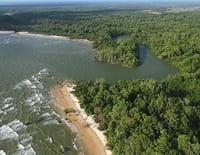 Le Brésil par la côte : L'Amazonie