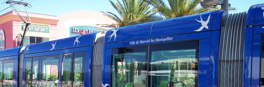 Résultats départementales à Montpellier: la gauche sort vainqueur