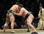 Sumo - Grand Sumo Tournament