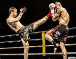 Kick-boxing - Talents 44