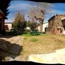 L' Absinthe