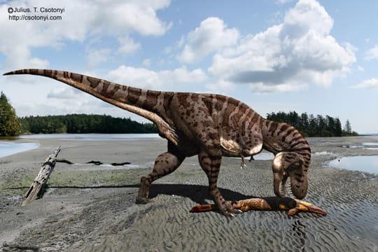 Mosasaure
