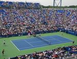 Tennis - Novak Djokovic / Juan Martin Del Potro