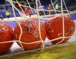 Handball : Championnat du monde masculin - Allemagne / Hongrie