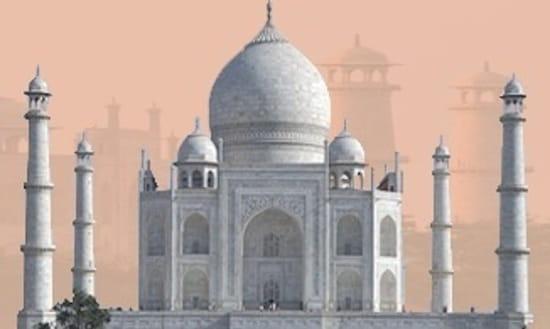 Coussin du Bengale