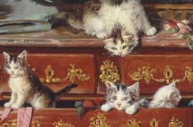 Les musées de France mettent les chats à l'honneur