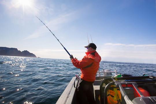 Pêche en mer: techniques et matériel