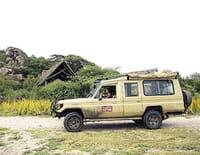 Planète safari : Ruaha, le show des prédateurs