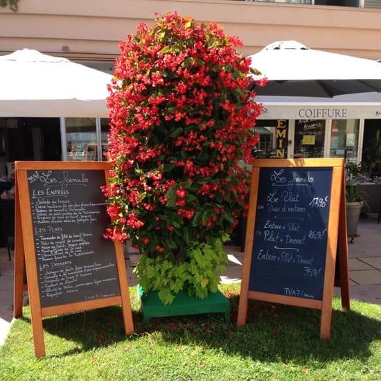 Restaurant : Terre et Mer  - Cartes et formules -