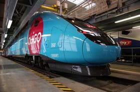 Les TGV Ouigo partiront depuis la gare Montparnasse à Paris