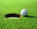 Golf : Championnat de Mexico - WGC at The Concession