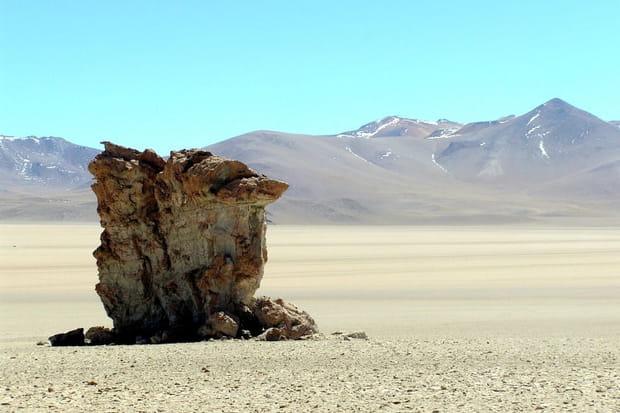 Dali, Bolivie