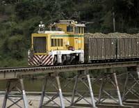 MegaTrains : Australie : le train de canne à sucre
