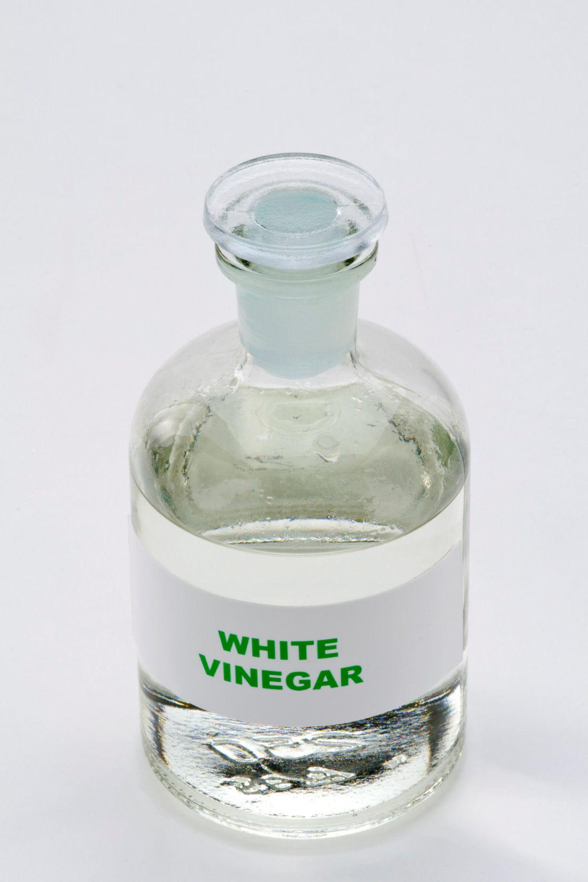Azulejos Portugais Salle De Bain ~ le vinaigre blanc pour les insectes ou les taches de calcaire