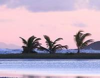 Au fil des Antilles, de la Martinique à Saint-Barthélémy