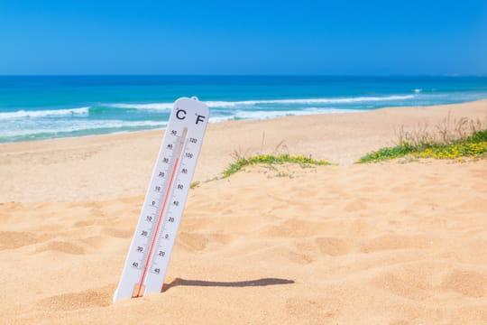 Canicule 2020: plan canicule en France, comment se protéger en cas de fortes chaleurs?