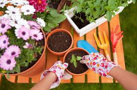 19systèmes D pour jardiner de façon naturelle et économique