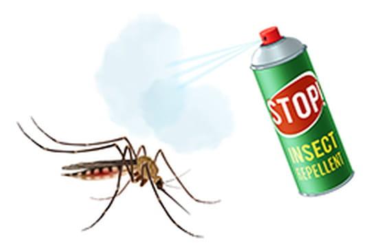 Insecticide chimique ou naturel: utilisation et dangers