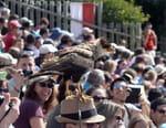 100 jours avec les animaux du Puy du Fou