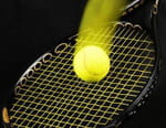 Tennis : Tournoi ATP d'Anvers