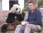 Dans les coulisses des zoos les plus extraordinaires d'Europe