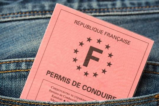 Perte du permis de conduire: déclaration, démarches et duplicata