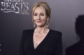 J.K Rowling sait qui elle veut pour jouer Dumbledore dans Les Animaux Fantastiques 2
