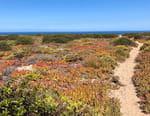 Les parcs naturels portugais