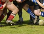 Rugby : Coupe d'automne des nations - Pays de Galles / Italie