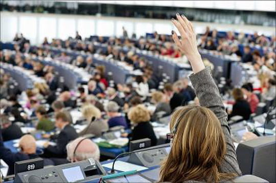 Elections européennes: laliste deseurodéputés français
