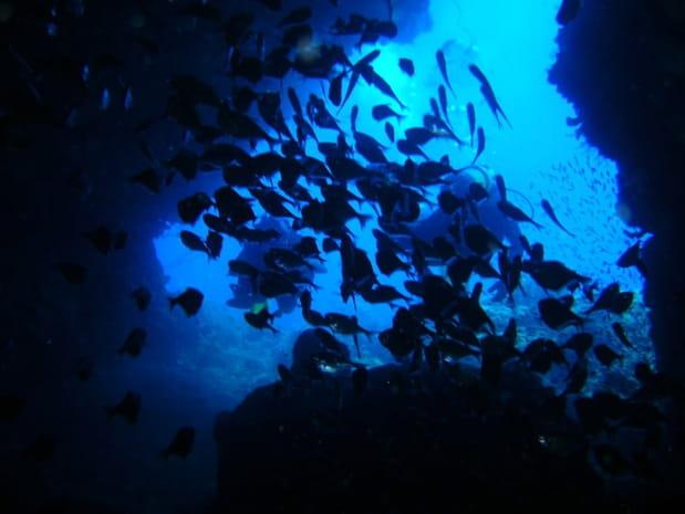 Grotte du sous-marin à Saint-Pierre