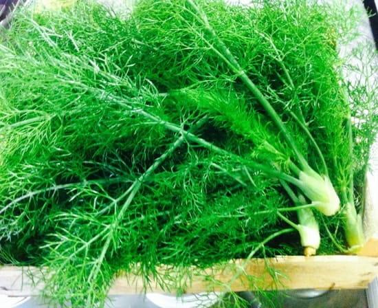 L'Atelier  - Légumes bio de l'exploitation Pratali -