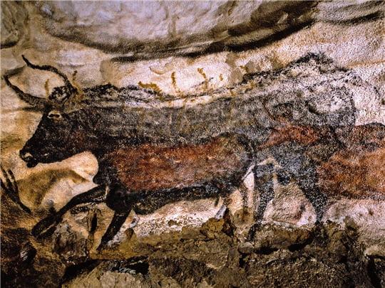 Taureau noir Lascaux