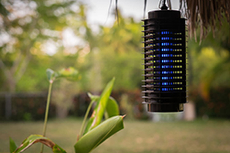 Lampe anti-moustiques: est-ce efficace?