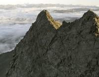La Nouvelle-Zélande, un paradis sur terre : Fjords et forêts tropicales