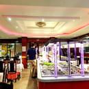 Restaurant : Royal Dragon  - Buffet à Volonté -   © 1