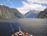 Nouvelle-Zélande, croisière au pays du long nuage blanc