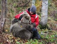 Poivre et Sel, deux oursons en Arctique : En juillet
