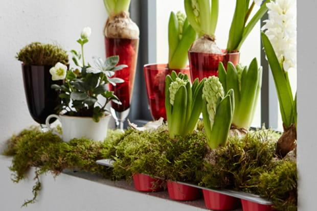 des pots de fleurs originaux. Black Bedroom Furniture Sets. Home Design Ideas
