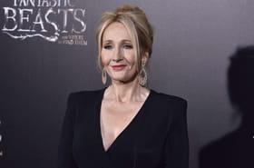 Les Animaux Fantastiques 2: J.K Rowling sait qui elle veut pour jouer Dumbledore
