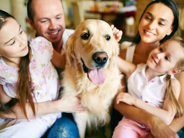 Les solutions pour faire garder vos animaux pendant les vacances