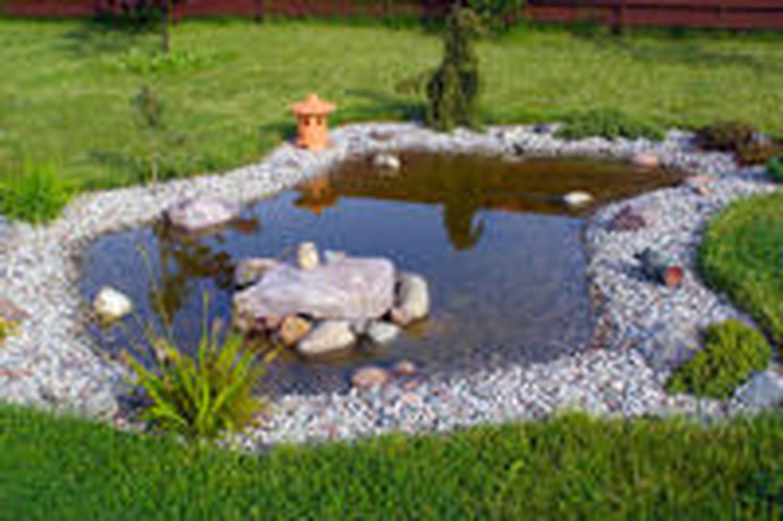 Bassin de jardin: comment le construire